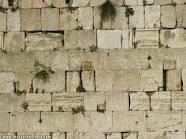 wailing-wall2.jpg