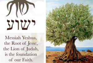 Root of our Faith
